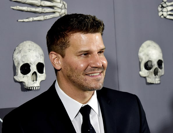 From Bones To Greys Anatomy Tv Show Characters That Are Veterans