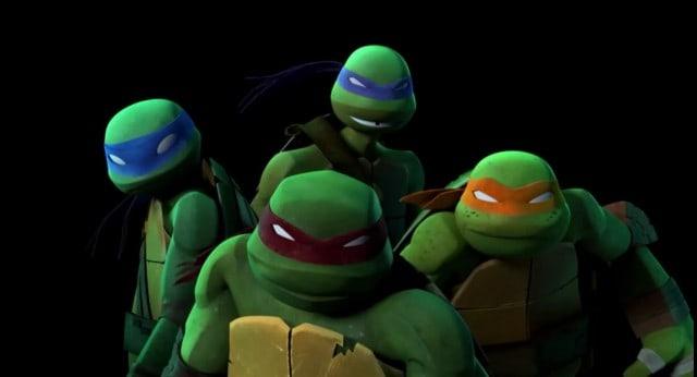 2491485-turtle859