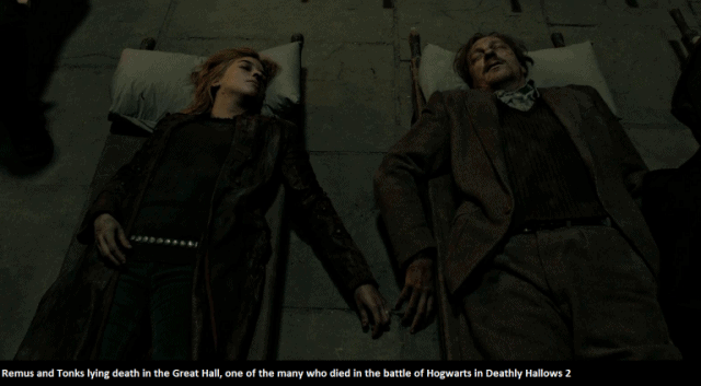 Remus-and-Tonks-bodies-from-Deathly-Hallows-2-768x424