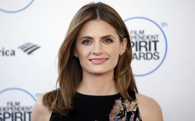 Former Castle Co-Star Stana Katic at the 2015 Indie Spirit Awards