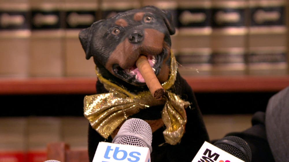 triumph the insult dog attends donald trump's inauguration
