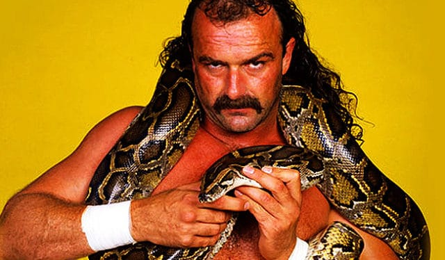 """b5179ab04 You might not believe this but Jake """"The Snake"""" Roberts didn't really like  snakes at all. In fact he even admitted that he was afraid of them in one  ..."""